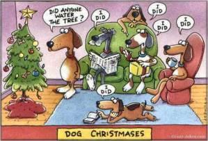 dog chrismases