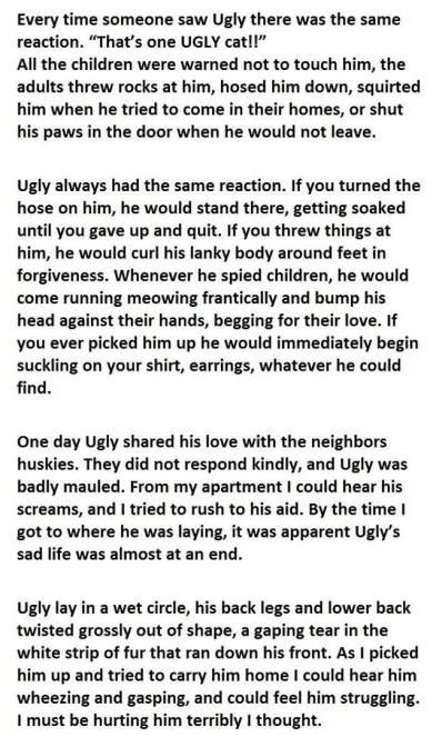 ugly-2