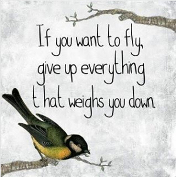 if you wanna fly