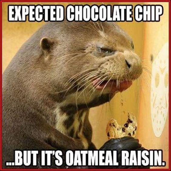 its oatmeal